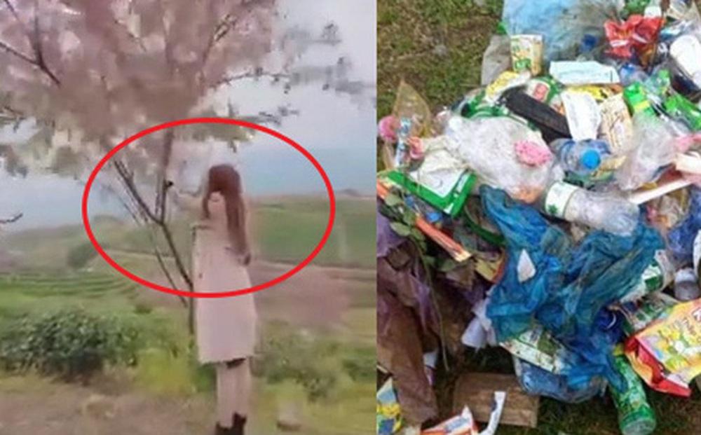 Nhiều du khách vô ý thức thi nhau xả rác, rung cây làm rụng hoa mai anh đào để chụp ảnh: đồi chè Ô Long (Sa Pa) buộc phải đóng cửa