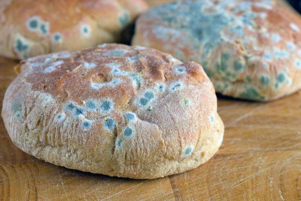 11 sự thật về bánh mì không phải ai cũng biết: Số 7 là món quà hoàn hảo từ nước Đức - Ảnh 4.