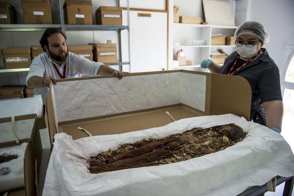 Chụp CT xác ướp lâu đời nhất thế giới: Chuyên gia hóa giải những câu hỏi từ 7000 năm trước - Ảnh 1.