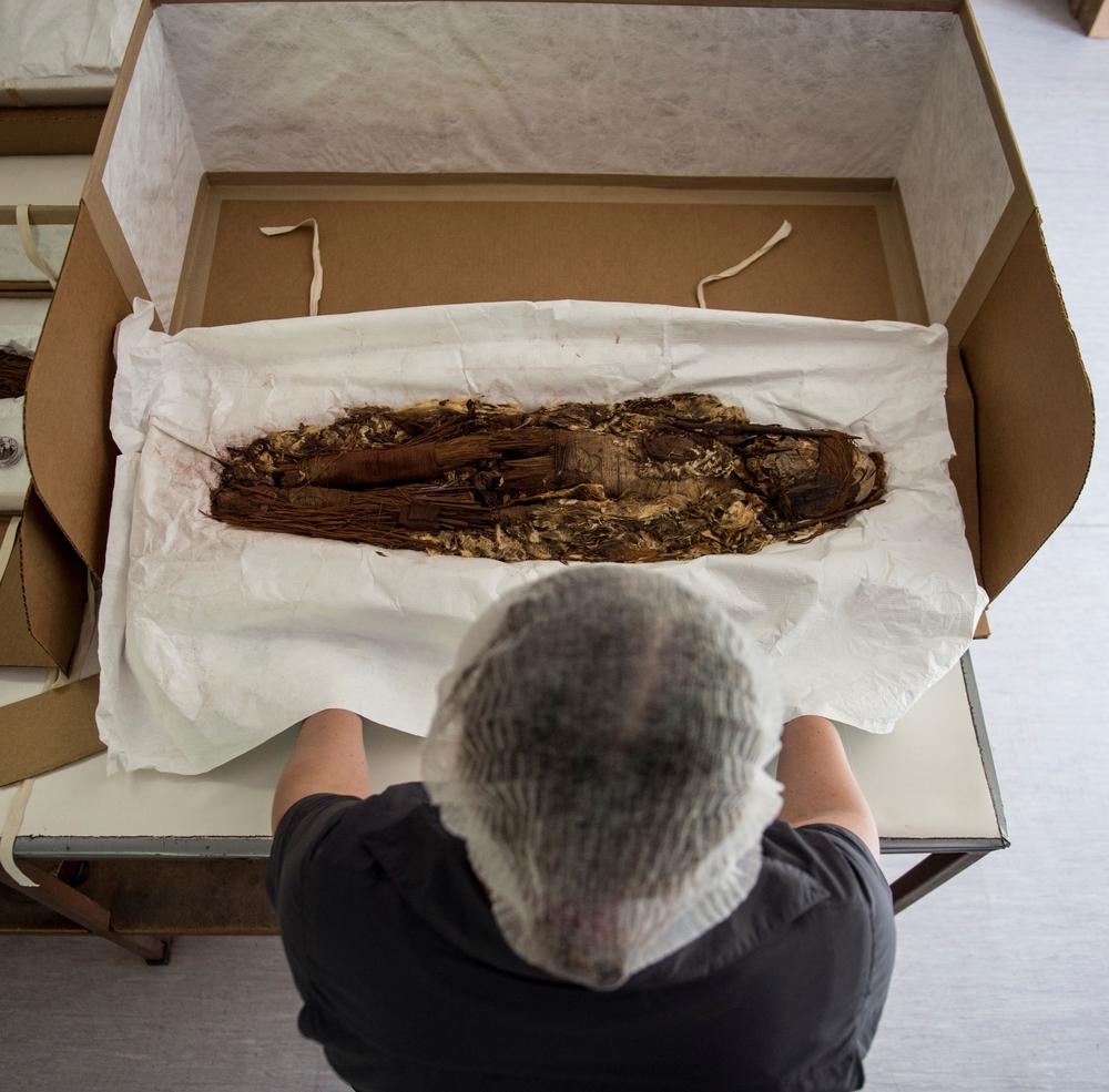 Chụp CT xác ướp lâu đời nhất thế giới: Chuyên gia hóa giải những câu hỏi từ 7000 năm trước - Ảnh 3.