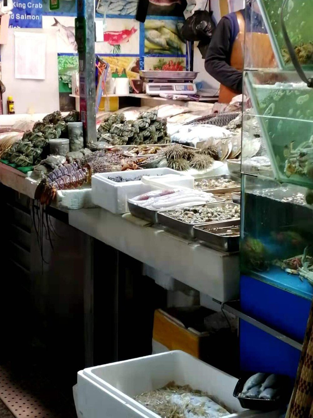 Trung Quốc úp mở đòn chí mạng vào xuất khẩu tôm của Úc: Điểm danh người bỏ túi món hời - Ảnh 3.