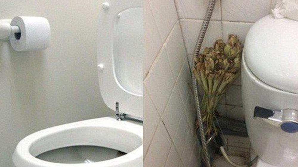Những mẹo khử mùi nhà vệ sinh thần thánh, các chị em nên thử ngay! - Ảnh 7.