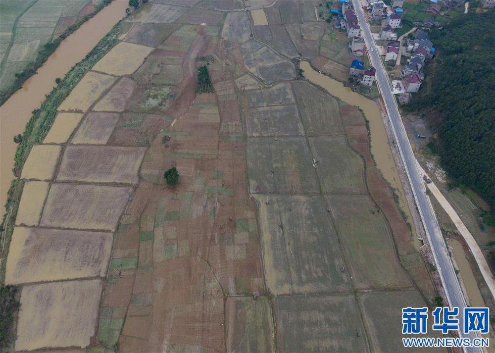 TQ: Cận cảnh cuộc sống của người dân ở nơi xảy ra vỡ đê trên sông Dương Tử - Ảnh 7.