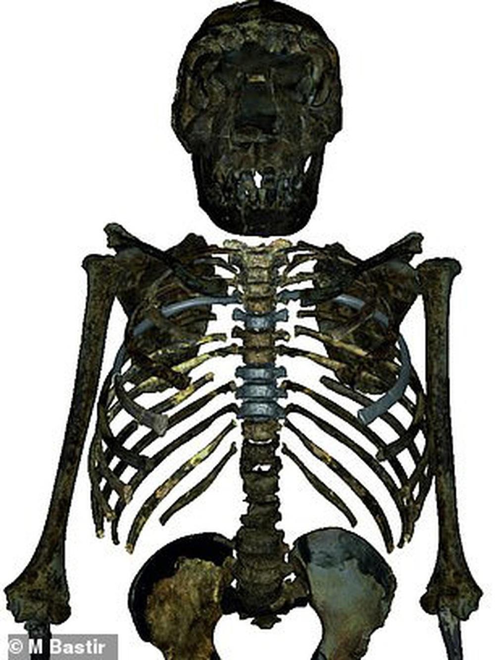 Kinh ngạc vóc dáng nam thần của… loài người tuyệt chủng 2 triệu tuổi - Ảnh 1.