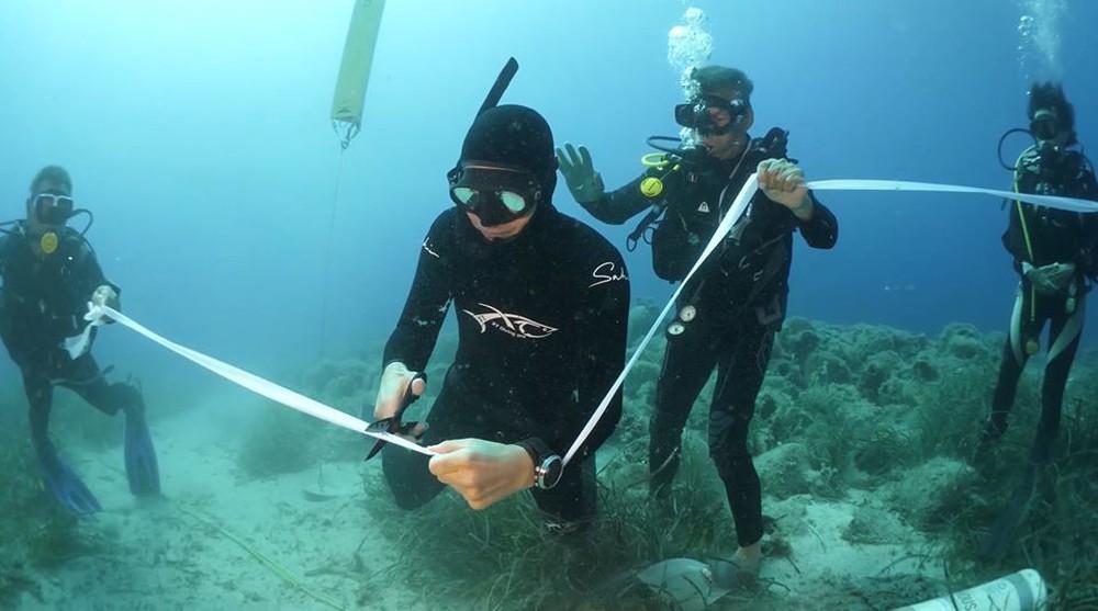 Cận cảnh bảo tàng dưới nước du khách tự do bơi lội ngắm xác tàu cổ đại - Ảnh 2.