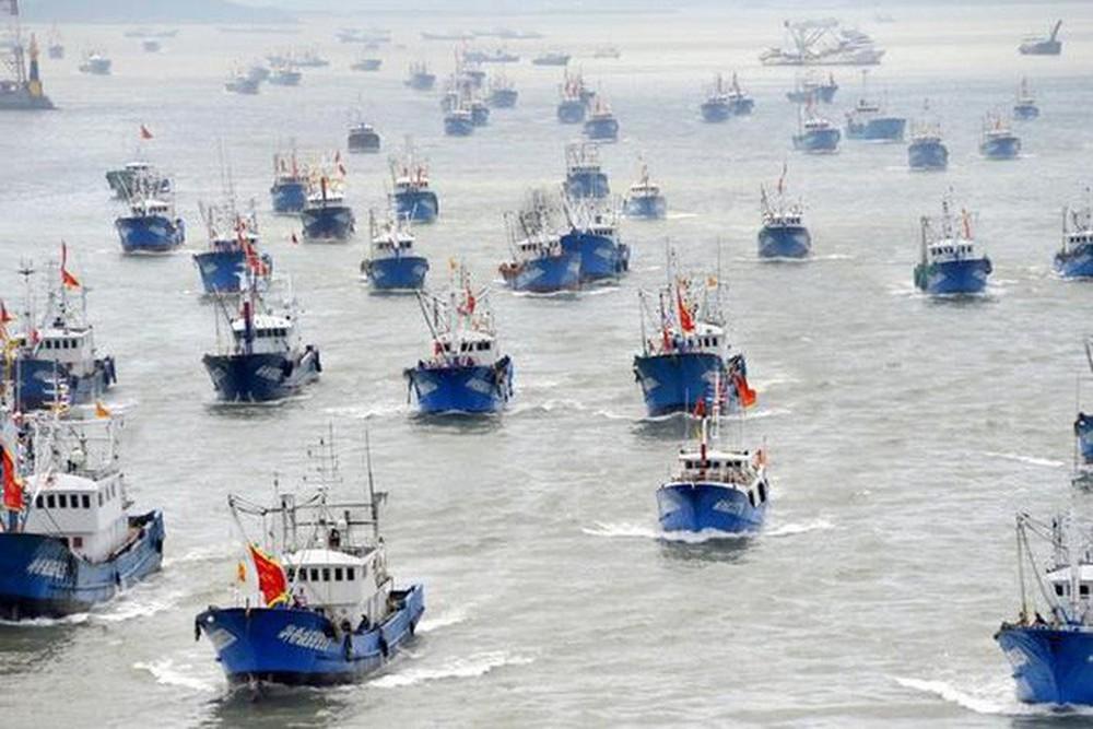 Tuần duyên Mỹ tuyên chiến với tàu cá Trung Quốc săn mồi - Ảnh 1.