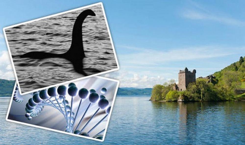 Bí ẩn ngàn năm về quái vật hồ Loch Ness - Kỳ 2: Bất ngờ thủy quái khổng lồ xuất hiện trên cạn - Ảnh 1.