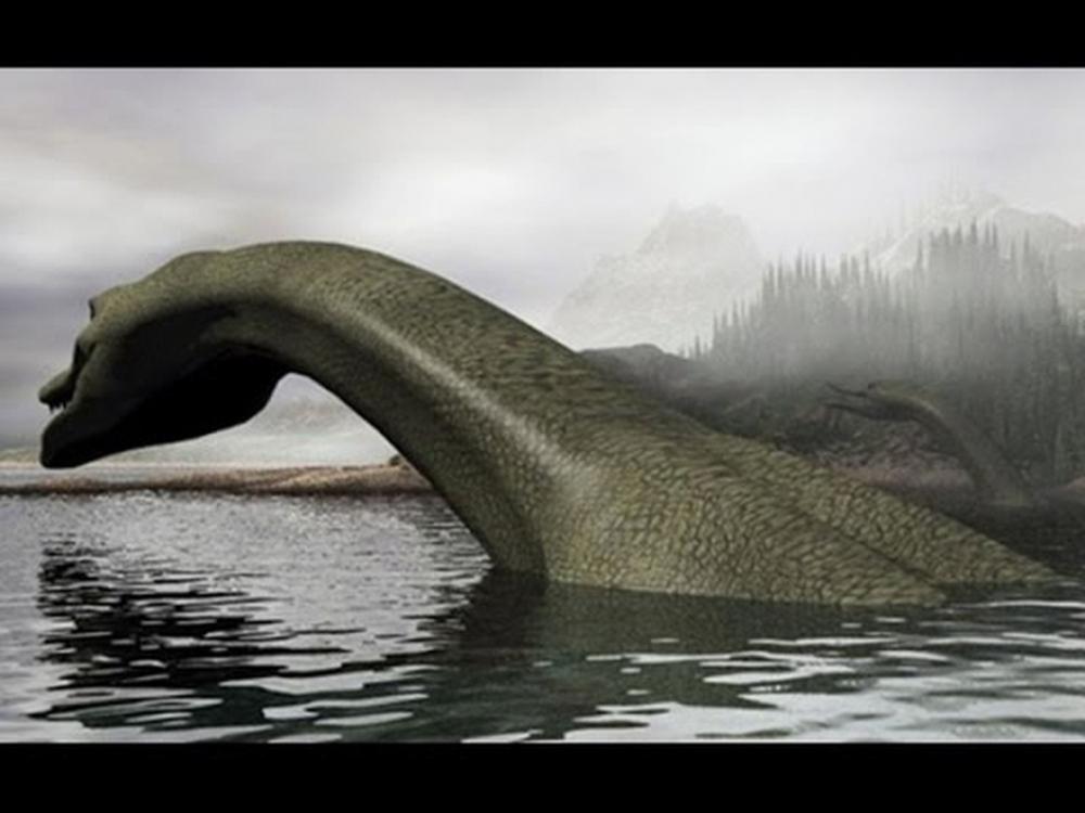Bí ẩn ngàn năm về quái vật hồ Loch Ness - Kỳ 2: Bất ngờ thủy quái khổng lồ xuất hiện trên cạn - Ảnh 2.