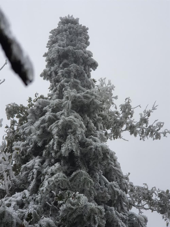 Mưa tuyết ở Y Tý và dãy Hoàng Liên Sơn sẽ dày hơn, lan tỏa xuống thị xã Sa Pa - Ảnh 3.