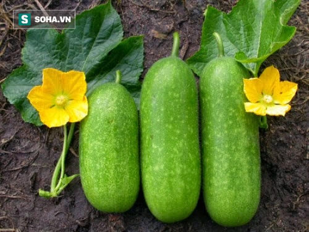 5 thực phẩm cao thủ giúp thận thải độc sạch sẽ: Bổ sung hàng ngày sẽ làm thận khỏe - Ảnh 2.