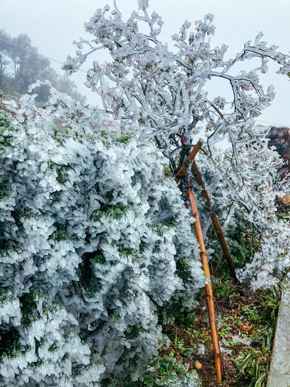 Ùn tắc đèo Ô Qúy Hồ - Sa Pa do nhiều du khách đổ lên xem băng tuyết - Ảnh 5.
