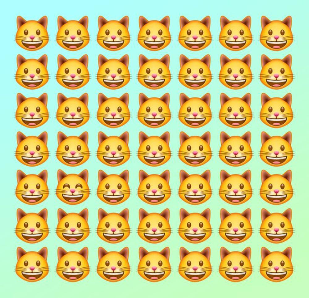 Đánh thức thị giác: Chỉ người tinh mắt mới nhìn ra con mèo khác biệt trong 1 giây - Ảnh 1.