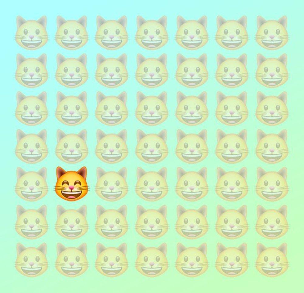 Đánh thức thị giác: Chỉ người tinh mắt mới nhìn ra con mèo khác biệt trong 1 giây - Ảnh 2.
