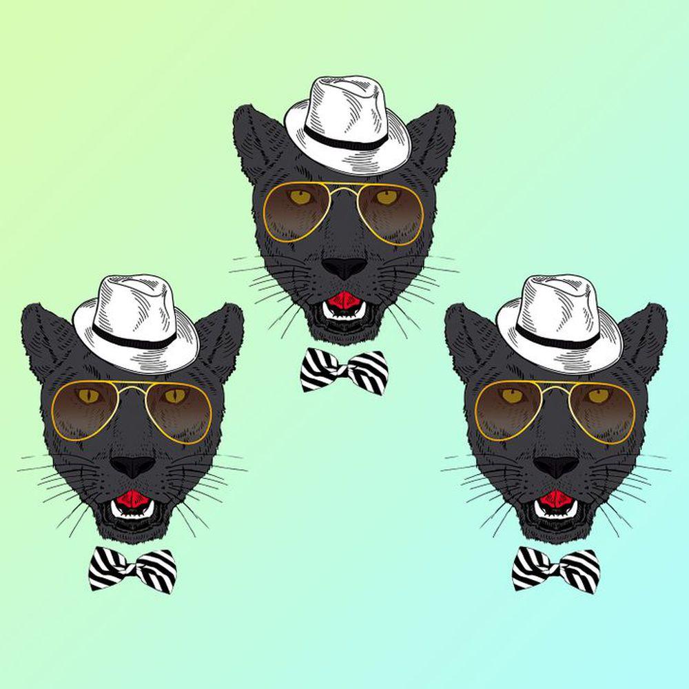 Đánh thức thị giác: Chỉ người tinh mắt mới nhìn ra con mèo khác biệt trong 1 giây - Ảnh 5.