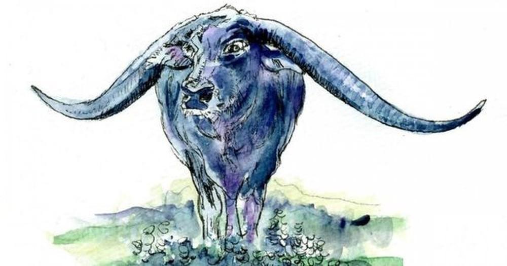 Tử vi tuần mới 12 con giáp từ 11/10 - 17/10: 4 con giáp được Thần tài ưu ái, tiền chảy vào túi ào ạt - Ảnh 2.