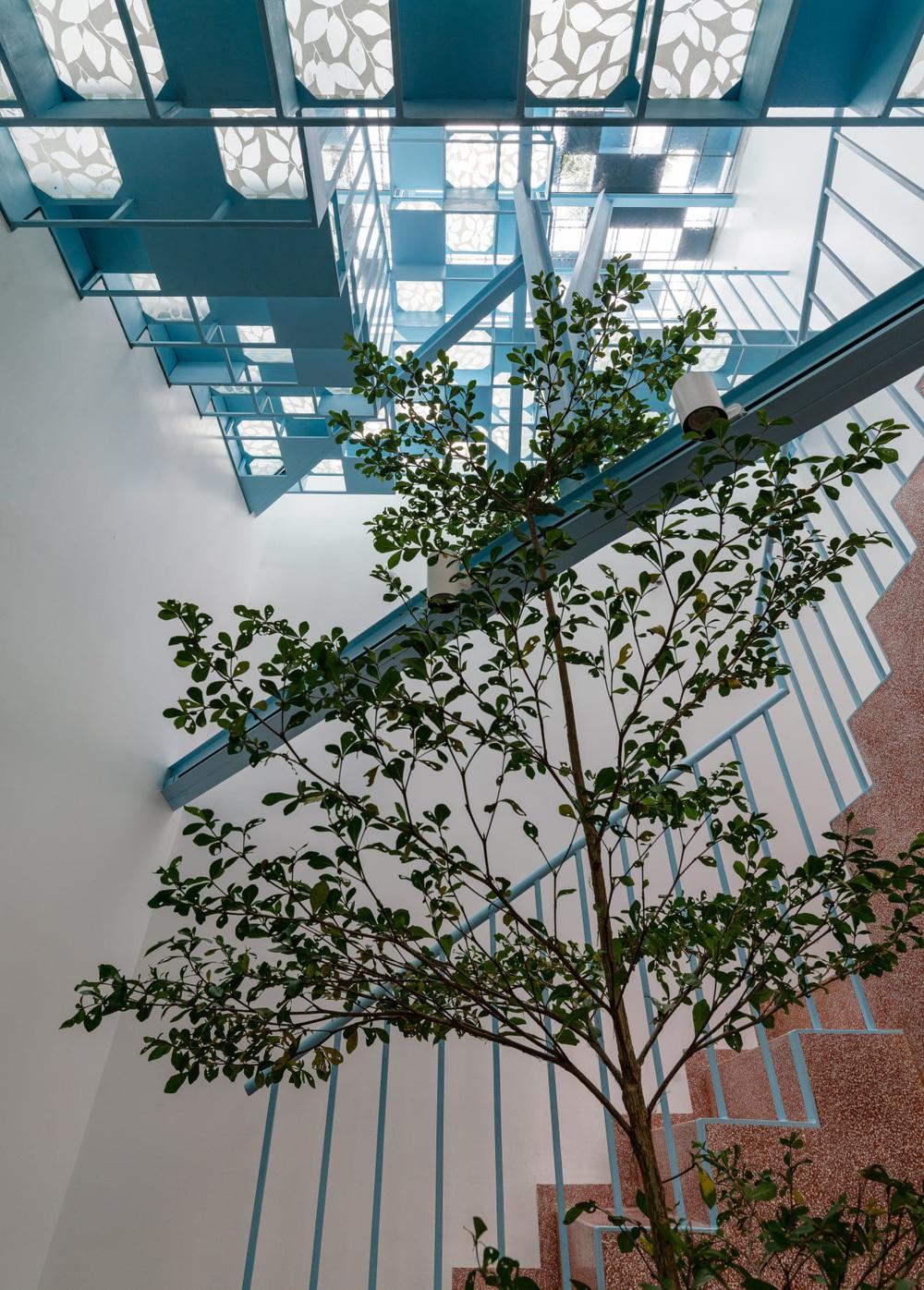 Mẹ Vĩnh Long xây nhà 140m2 cho con gái nghỉ trưa, tạo hình nhà trên cây độc đáo với sắc xanh hút hồn - Ảnh 6.