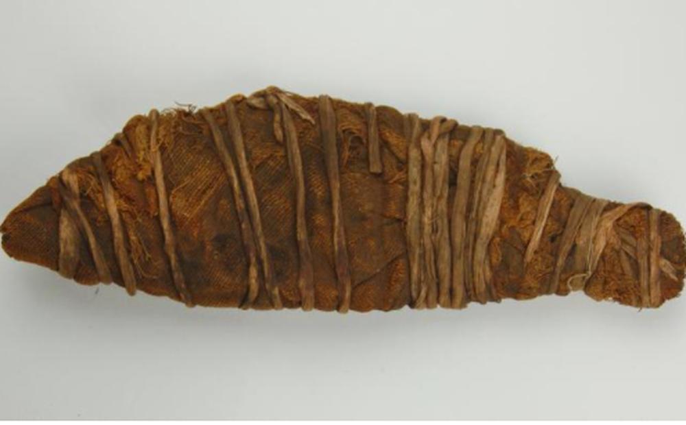 Xác ướp dài 28cm 'nằm im' trong viện bảo tàng, kết quả chụp CT khiến các chuyên gia thích thú: Bây giờ mới rõ bên trong!