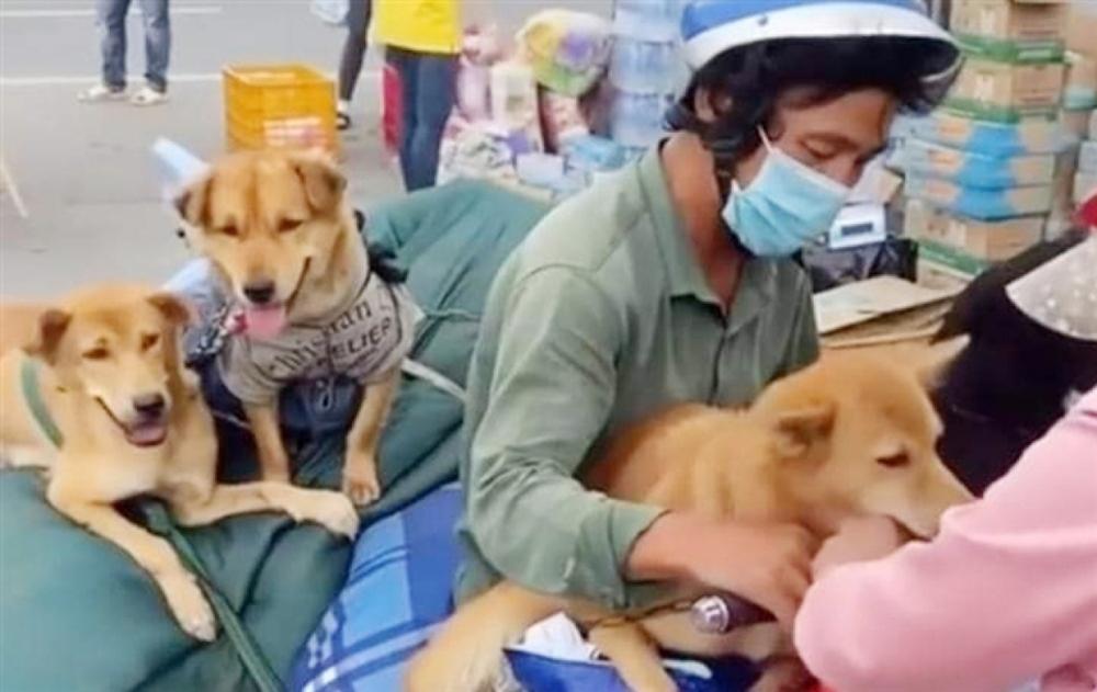 Nữ bác sĩ trong vụ 15 con chó bị tiêu hủy: Mang nhiều bệnh nền, chỉ vài tháng nữa là về hưu nhưng vẫn tham gia chống dịch - Ảnh 4.