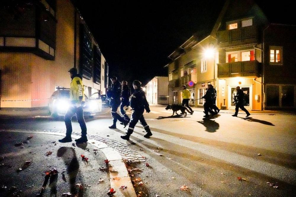 5 người ở Na Uy bị bắn chết bằng cung tên - Ảnh 2.