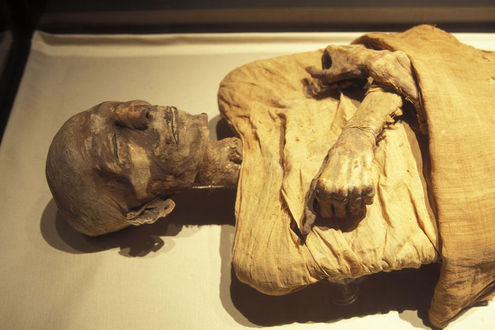 Dùng DNA tái tạo dung nhan của 3 xác ướp Ai Cập, chuyên gia phát hiện chi tiết lạ khiến họ trở nên đặc biệt - Ảnh 1.
