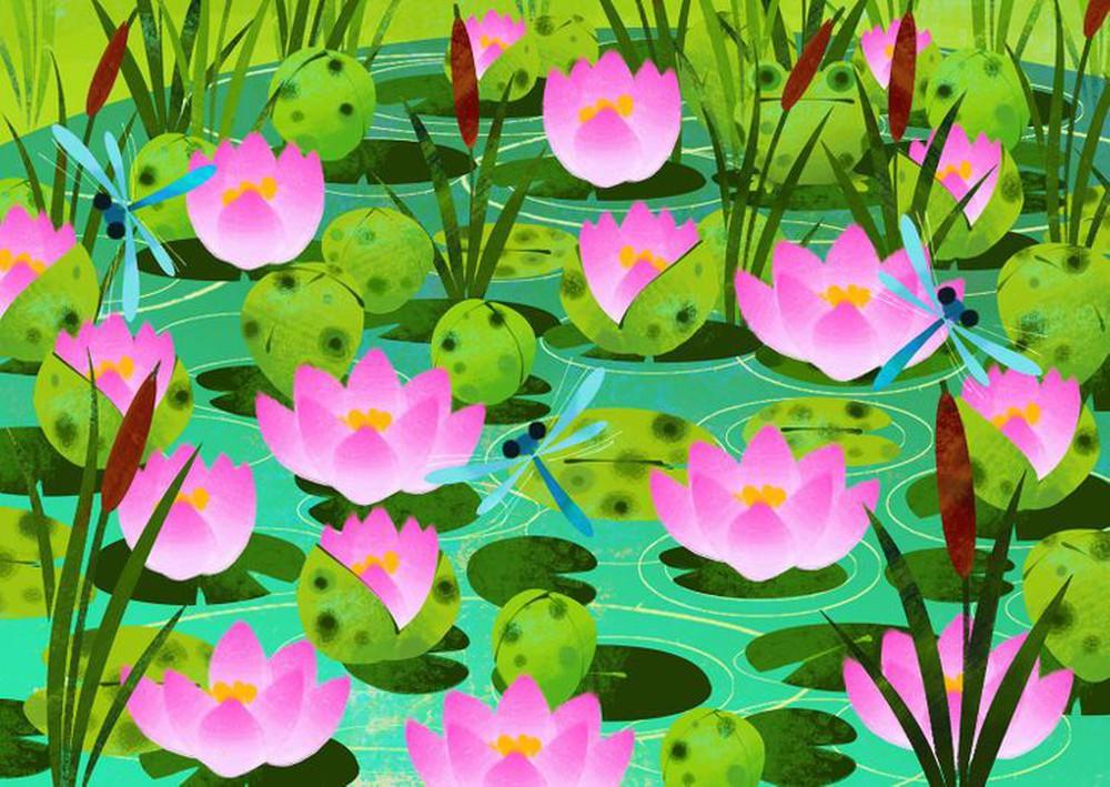 Thách thức thị giác 3 giây: Đố bạn tìm ra con ếch xanh trong đầm sen nở rộ - Ảnh 1.