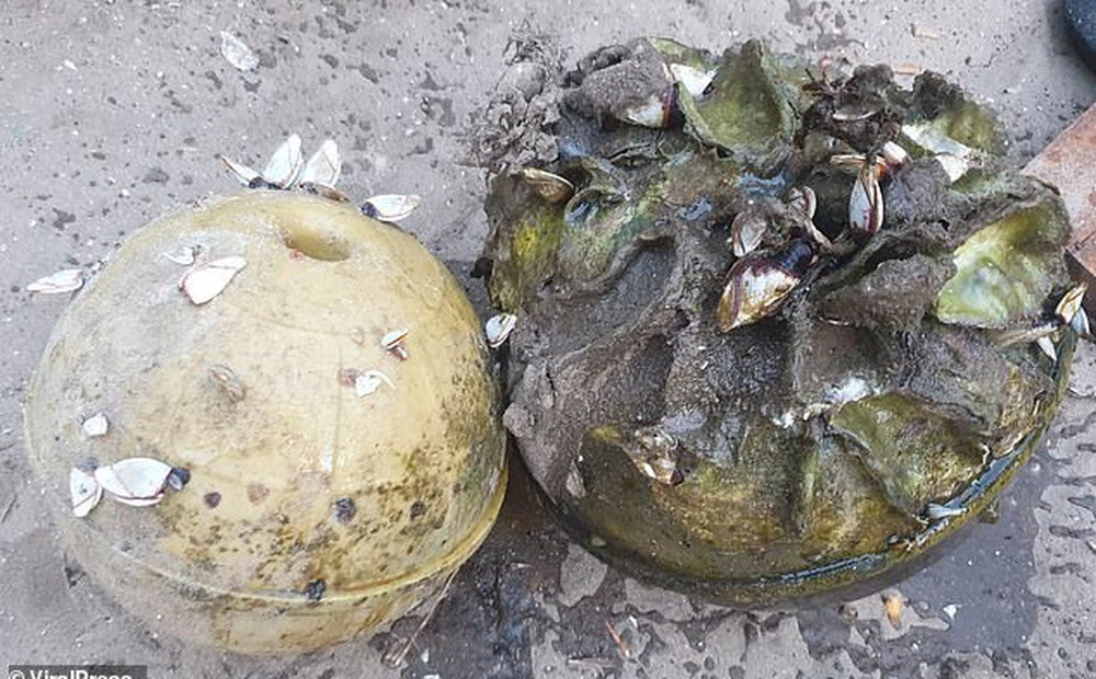 Đi bắt ốc ở bờ biển, ngư dân Thái Lan thấy 1 chiếc phao cứu hộ thì nhặt về, không ngờ đổi đời