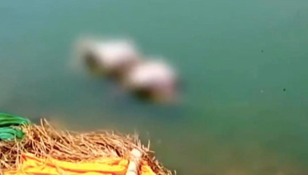 Kinh hoàng cảnh thi thể nạn nhân Covid-19 trôi dạt vào bờ sông Ấn Độ - Ảnh 3.