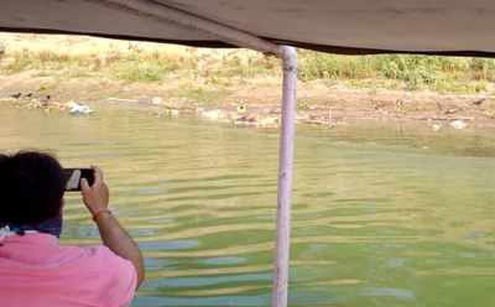 Phát hiện thêm 70 thi thể Covid-19 trôi sông Ấn Độ, phân hủy nặng đến mức không thể xét nghiệm tử thi