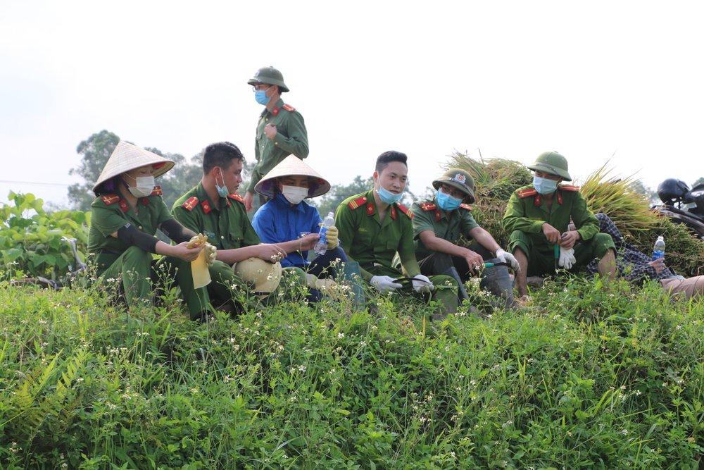 Công an xuống xã lội ruộng gặt lúa giúp các F1, F2 đang phải cách ly - Ảnh 11.