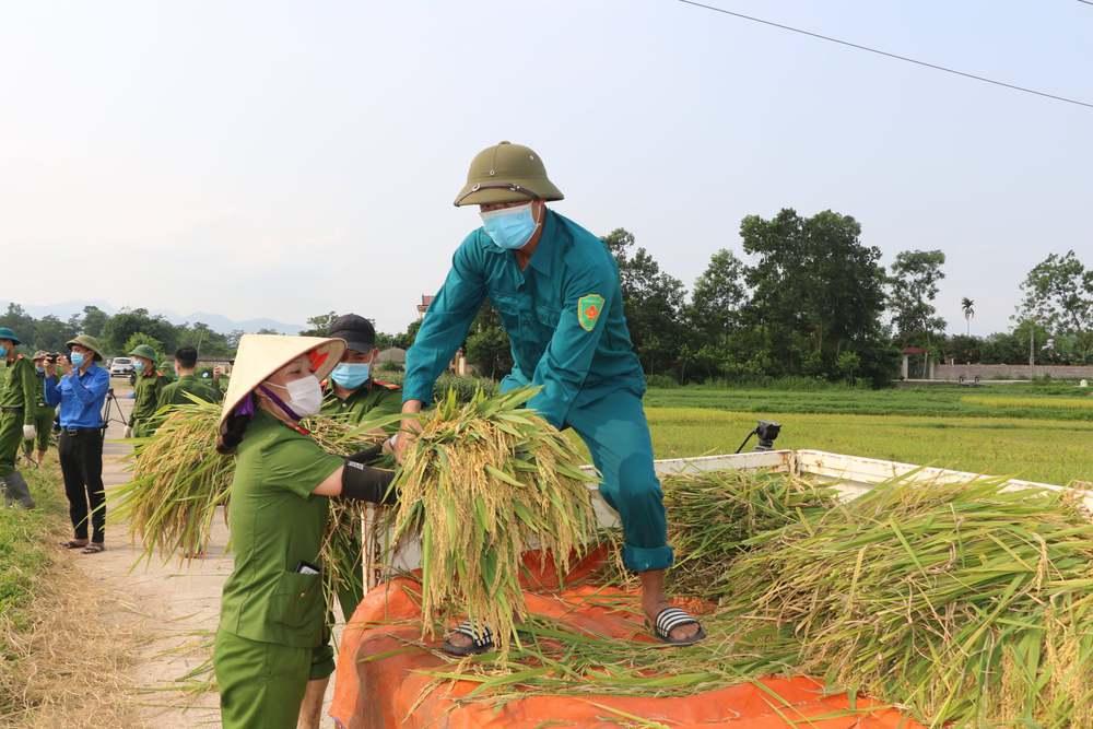 Công an xuống xã lội ruộng gặt lúa giúp các F1, F2 đang phải cách ly - Ảnh 9.