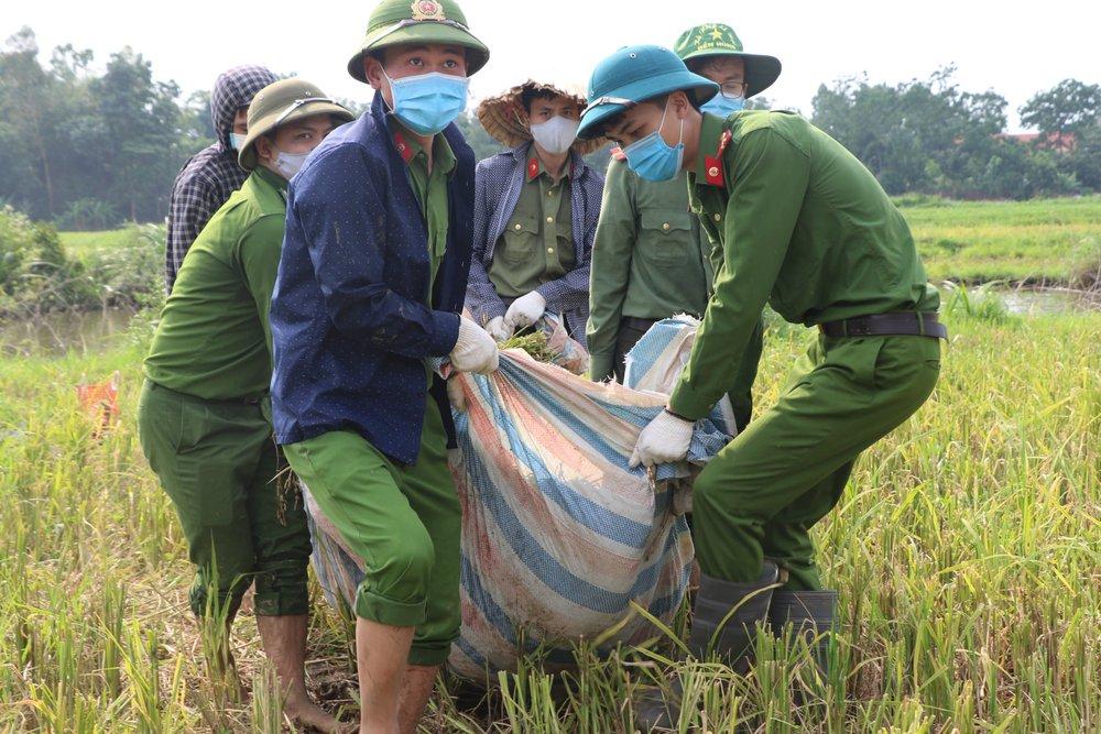 Công an xuống xã lội ruộng gặt lúa giúp các F1, F2 đang phải cách ly - Ảnh 5.