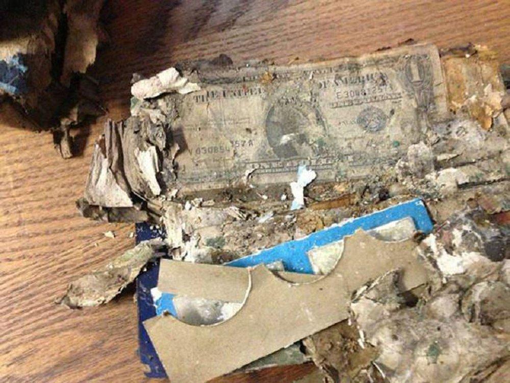 Tu sửa ngôi nhà bỏ hoang nhiều năm của ông bà, cháu trai phát hiện bí mật chưa từng được tiết lộ - Ảnh 6.