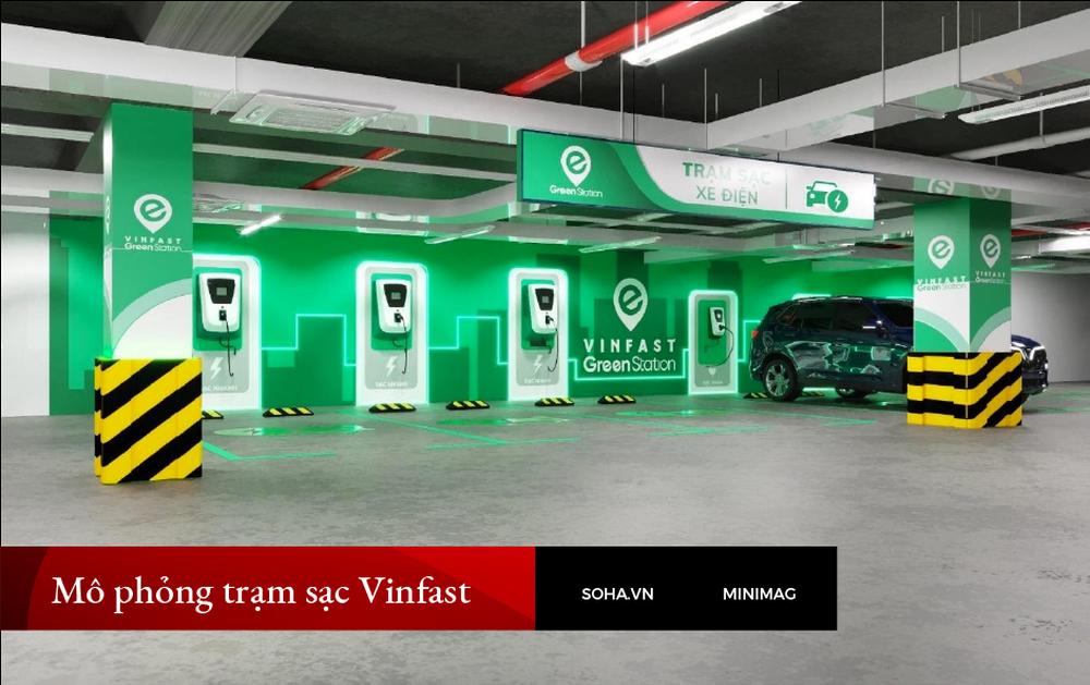 Từ xe điện chỉ có một nửa sự thật đến bé hạt tiêu Vinfast tại Việt Nam: Xanh mong manh! - Ảnh 15.