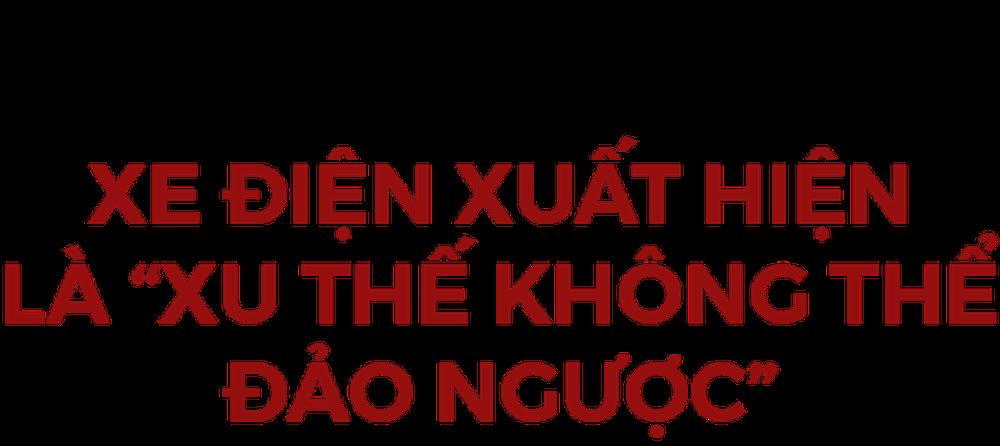 Từ xe điện chỉ có một nửa sự thật đến bé hạt tiêu Vinfast tại Việt Nam: Xanh mong manh! - Ảnh 1.