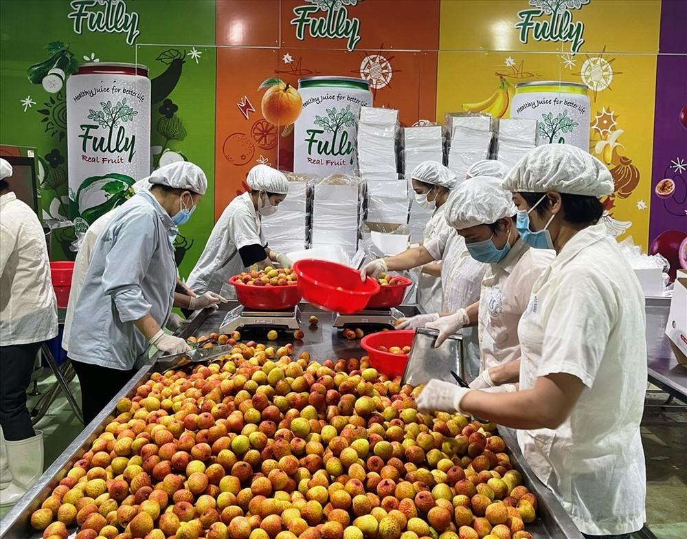 Vải thiều Bắc Giang lên kệ siêu thị Thái Lan giá 230 nghìn đồng/kg - Ảnh 2.