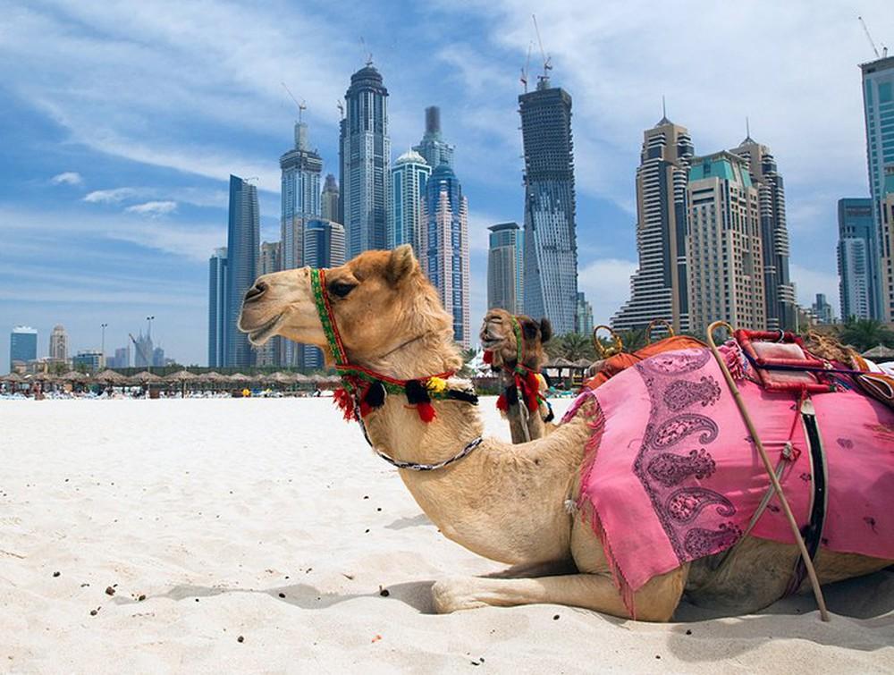 Các điểm du lịch chanh sả phải khám phá tại Dubai - nơi đội tuyển Việt Nam đang đóng quân - Ảnh 8.