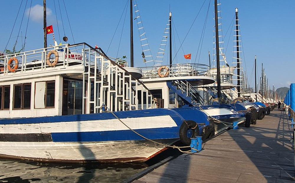 Dàn tàu du lịch hơn 500 chiếc trị giá hàng nghìn tỷ tại Hạ Long 'đắp chiếu', doanh nghiệp cầu cứu Thủ tướng