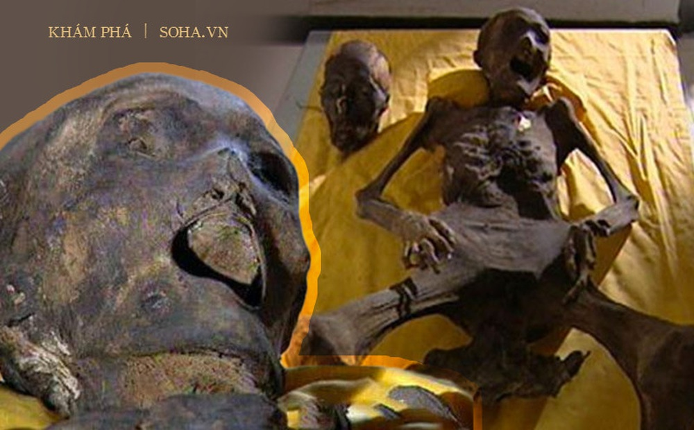Thấy xác chết há hốc miệng khi khai quật lăng mộ, đội khảo cổ sợ hãi: Người này đã tỉnh dậy trong quan tài!