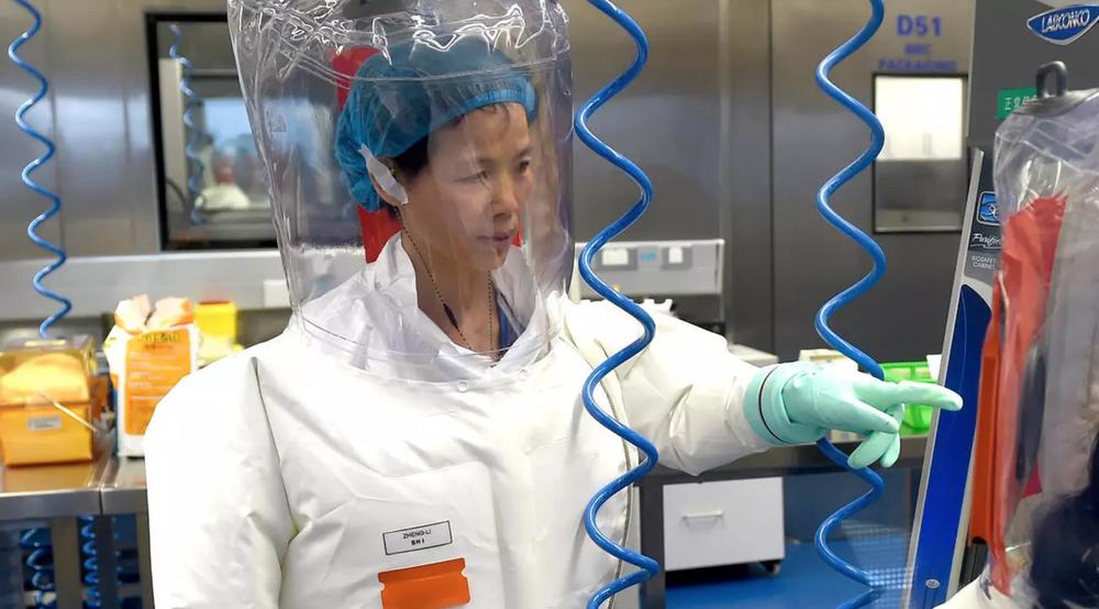 Lộ bằng chứng về việc Viện Virus học Vũ Hán nuôi dơi làm thí nghiệm: Mỹ nghi điều tra viên WHO bao che - Ảnh 4.