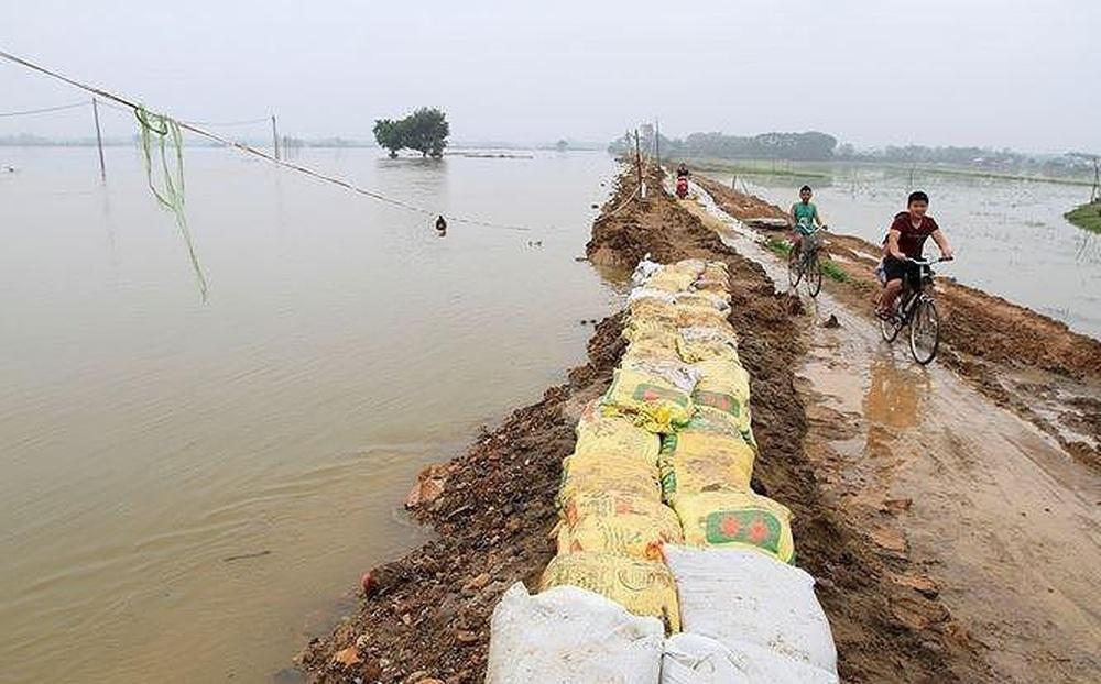 Hàng nghìn mét đê, kè bị sạt lở, Hà Nội công bố tình huống khẩn cấp