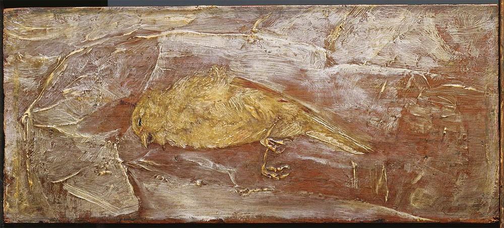 Giải mã bí ẩn hài cốt cô gái ngậm 2 đầu lâu chim trong miệng - Ảnh 4.