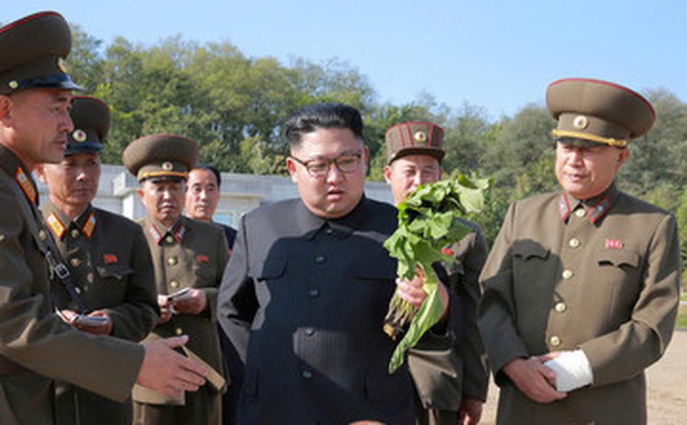 Triều Tiên lần đầu tài trợ 300.000 USD cho quốc gia nào?