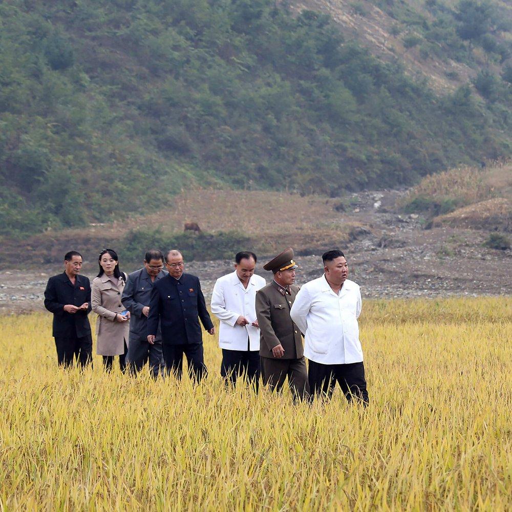 1 gói cà phê giá 100USD: Triều Tiên đang thiếu lương thực tới mức nào? - Ảnh 2.