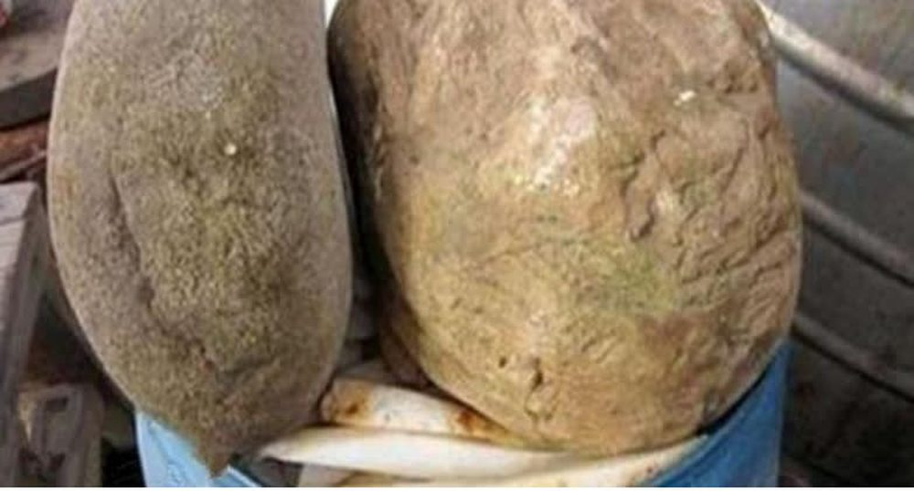Bán được hòn đá với giá hơn 7 tỉ, người nông dân vẫn tiếc suýt ngất khi chủ mới mang nó ra đánh bóng  - Ảnh 2.
