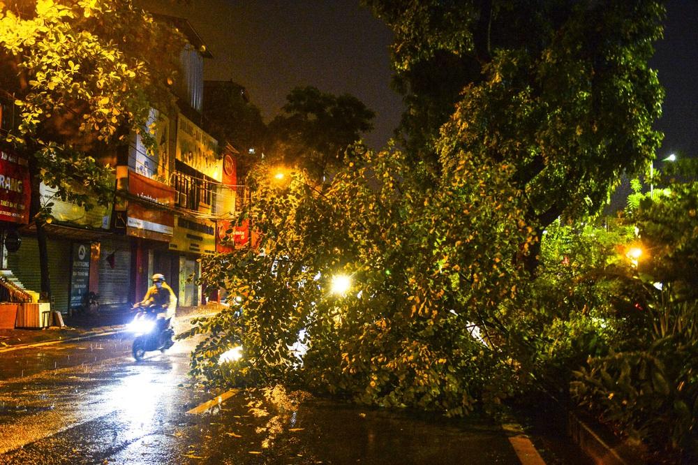 [ẢNH] Sau mưa giông lớn ở Hà Nội, cây đổ la liệt, đường ngập, nhiều xe chết máy - Ảnh 3.