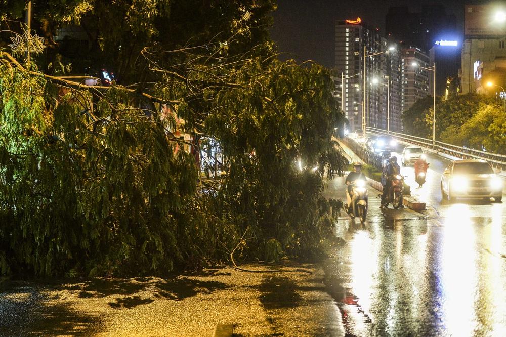 [ẢNH] Sau mưa giông lớn ở Hà Nội, cây đổ la liệt, đường ngập, nhiều xe chết máy - Ảnh 5.