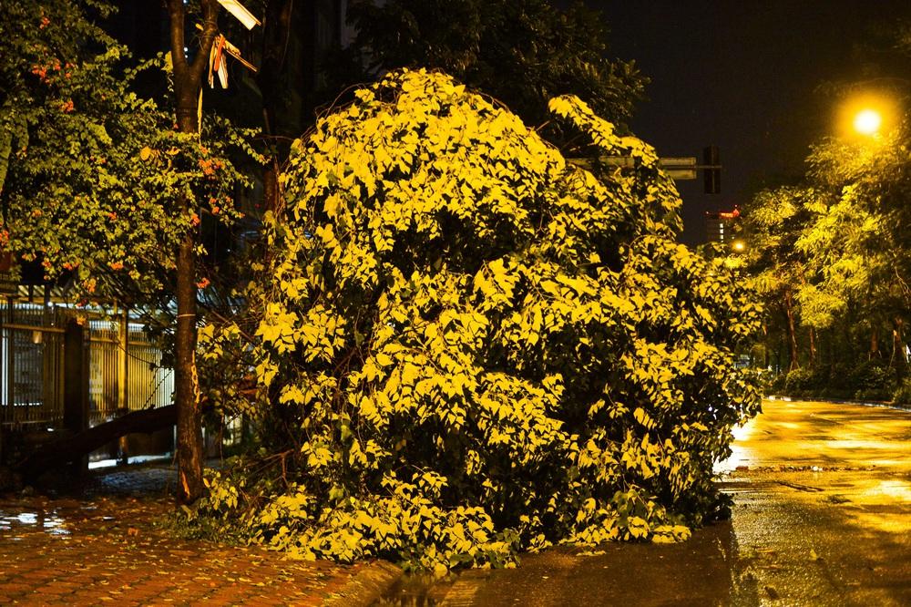 [ẢNH] Sau mưa giông lớn ở Hà Nội, cây đổ la liệt, đường ngập, nhiều xe chết máy - Ảnh 4.