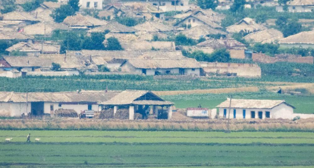Ảnh hiếm về nông thôn Triều Tiên khi tình hình lương thực căng thẳng - Ảnh 3.