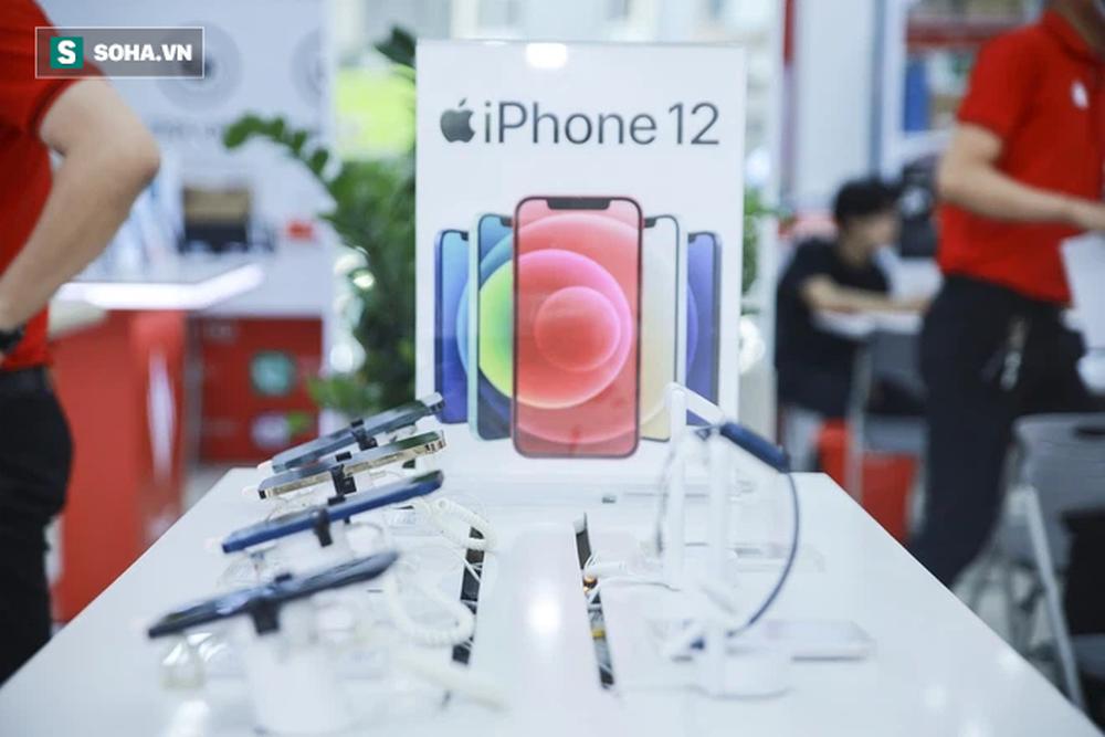 iPhone 11 sập giá xuống thấp nhất lịch sử, rẻ hơn cả hàng cũ - Ảnh 1.