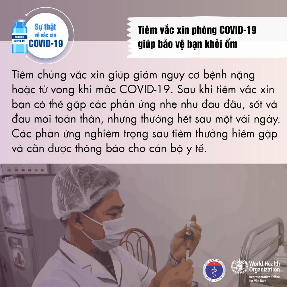 Sự thật về vắc xin phòng COVID-19 - Ảnh 3.